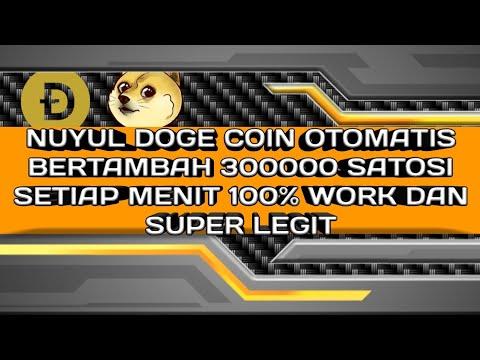 Nuyul doge coin otomatis bertambah 300000 satosi setiap 1 menit 100% work wajip coba