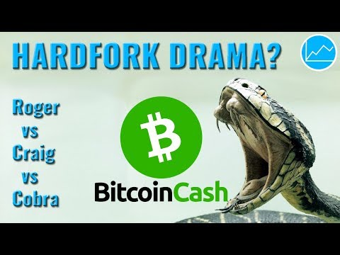 Bitcoin Cash Drama: Kommt der umstrittene November BCH Hardfork?