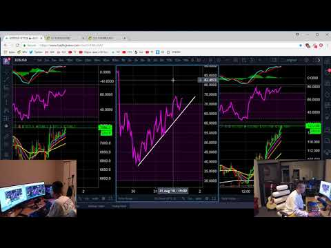 Live Trade  – $1,400 / 2.8% Profit by 7 AM. Shorting EOS.