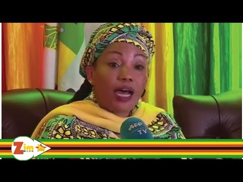 Zim News: Youths call for Zec disbandment