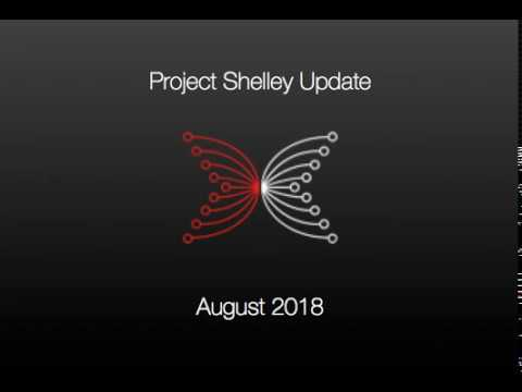 IOHK | PMO Project Shelley August 2018 Update