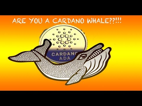 How much ADA do I need to become a Cardano Whale