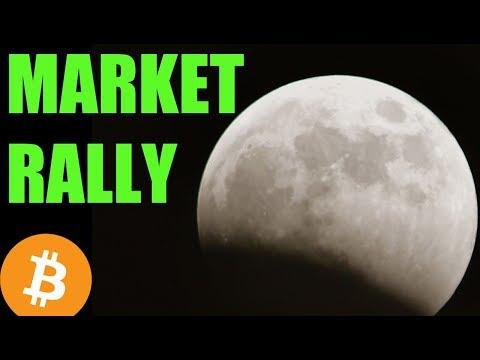 Crypto Market RALLY – Daily Bitcoin and Cryptocurrency News