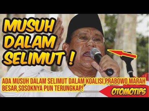Ada Musuh Dalam Selimut Dalam Koalisi,Prabowo Marah Besar, Sosoknya Pun Terungkap! – OTOMOTIPS