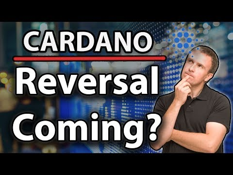 Cardano ADA Is a Reversal Coming? & CEO Charles Thinks BTC Will Be Permanent!