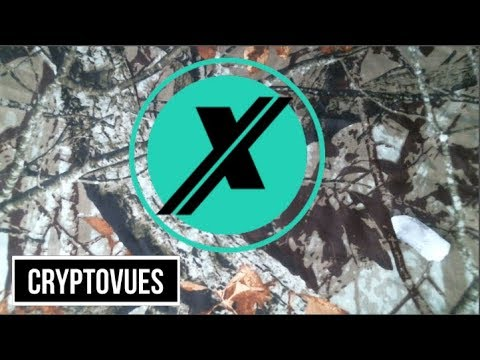BITCONNECT X Crypto Psychic Predictions