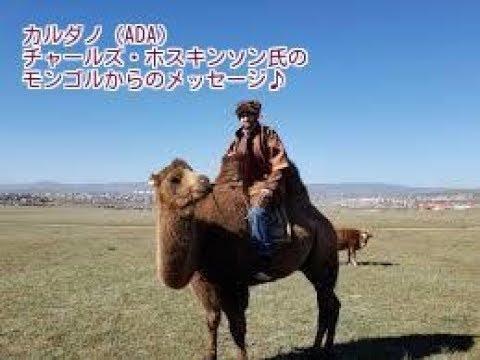 カルダノ(ADA)チャールズ・ホスキンソン氏のモンゴルからのメッセージ ~2019年に向けての熱い想い~
