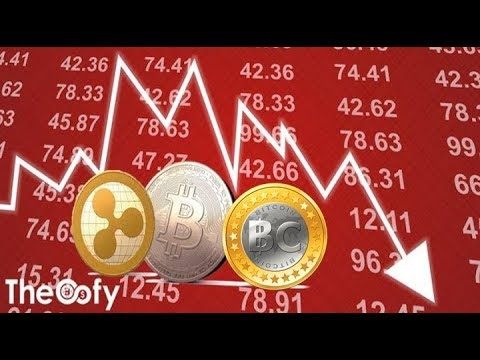 Crypto News! XRP, Bitcoin Cash, and Bitcoin Fall Despite Speculations For a Significant Rise