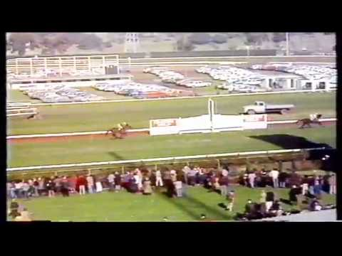 1978 VRC  Grand National Hurdle