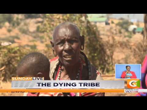 Yaaku tribe on the verge of extinction | The dying tribe #SundayLive