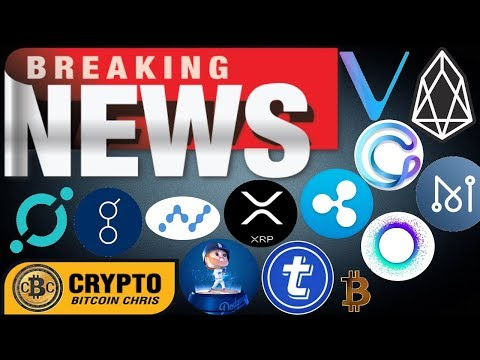 Crypto Game Changer!🔸Bankers Destroy BTC w/ bug?🔸XRP Ripple EXPLODES in Korea🔸CNBC covers VET!