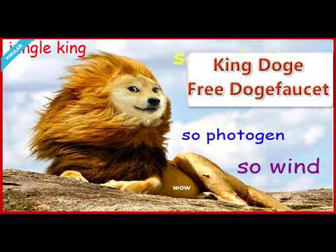 """Can Dogecoin (DOGE) Become the """"Next"""" Bitcoin?"""