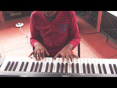 Titanium (David Guetta ft. Sia) Instrumental Cover | GSS School of Music