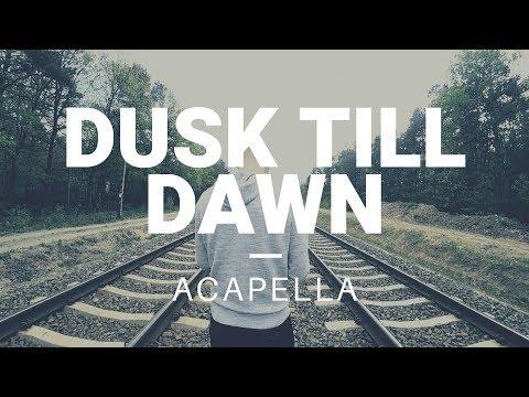 ZAYN ft. Sia – Dusk Till Dawn (zwieR.Z. Remix) Acapella