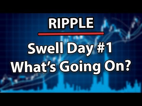 Must Watch! Ripple (XRP) Swell Day #1 What's Going On With The Price?