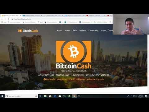 Bitcoin Cash: Why it may rise in the near future