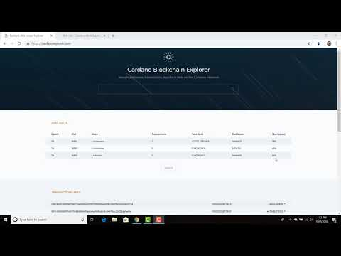 How to use the Cardano Blockchain Explorer