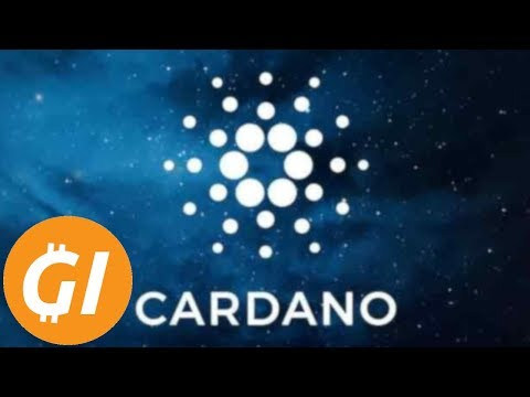 Should You Invest? Reviewing Cardano (ADA)'s First Year