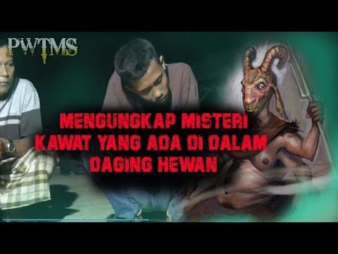 GUS WAWAN 048 : MENGUNGKAP MISTERI KAWAT YANG ADA DIDALAM DAGING HEWAN