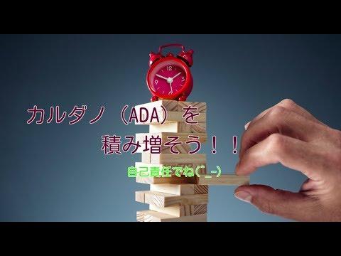 【翻訳動画】カルダノ(ADA)- 今こそADAで積み立てを ~長期投資としてのカルダノ~