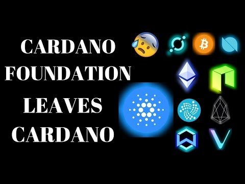 Cardano Is Falling Apart? My Honest Opinion On The Recent Split