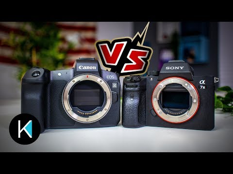 Canon EOS R vs. Sony a7III FOR VIDEO!