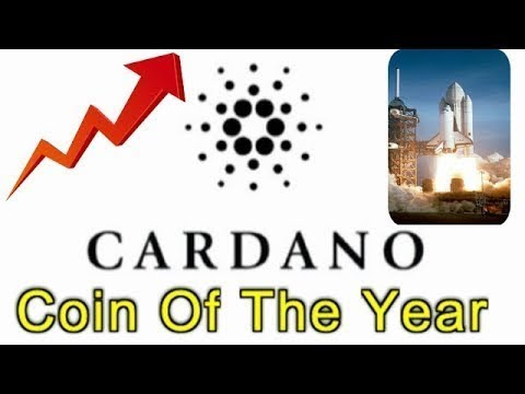 Cardano New ! When Will Cardano Take Off