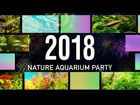 [ADAview] Nature Aquarium Party 2018