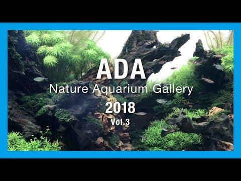 【ADA Nature Aquarium Gallery】ADA ネイチャーアクアリウムギャラリー2018 vol.3