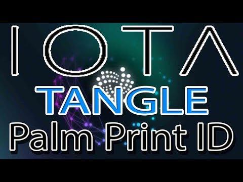 IOTA Tangle NEW Use Case: Palm Print Identification System