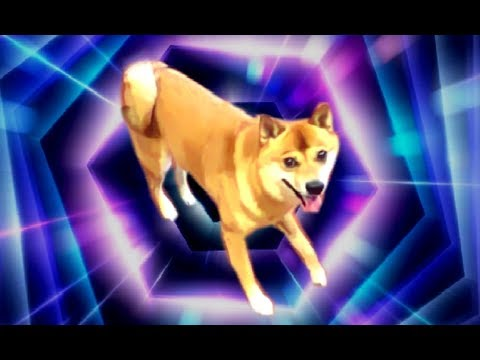 dancing doge