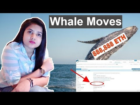 Whale Moves 888,888 Ethereum ETH, Bitcoin, Ripple, VeChain – CryptoCurrency News