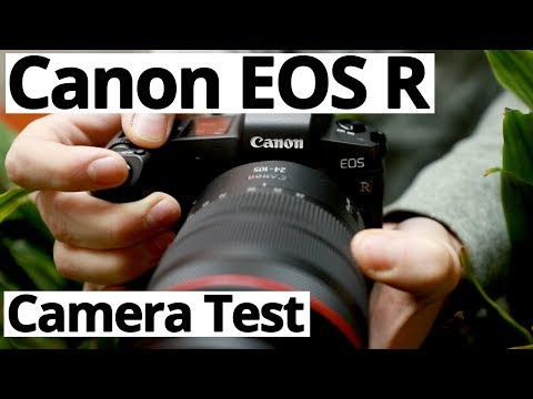 Canon EOS R: High ISO and Exposure Recovery