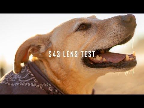 $43 lens on the Canon EOS R Full Frame Camera | Yongnuo 50mm