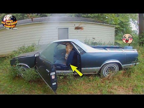 Lama Diparkir! Saat Pintu Mobil Dibuka, isi Dalamnya Bikin Merinding!! Ternyata ada…