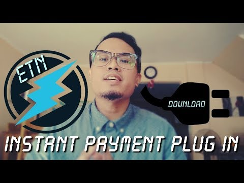 Electroneum Instant Payment Plug-In for Online Vendors!