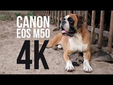 Canon EOS M50 video (4K, SAMPLE)