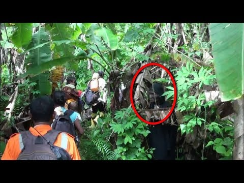 Penunggu Hutan Angker Beri Peringatan!! Terlihat Jelas Ada Sosok Penampakan Misterius!
