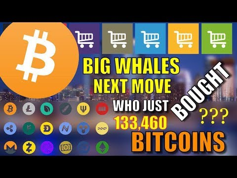 WHO BOUGHT 133,460 BITCOINS BITCOIN WHALES NEXT MOVE CRYPTOCURRENCY NEWS hindi