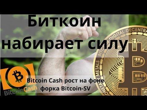 Биткоин набирает силу. Bitcoin Cash рост на фоне форка Bitcoin-SV. Курс BTC
