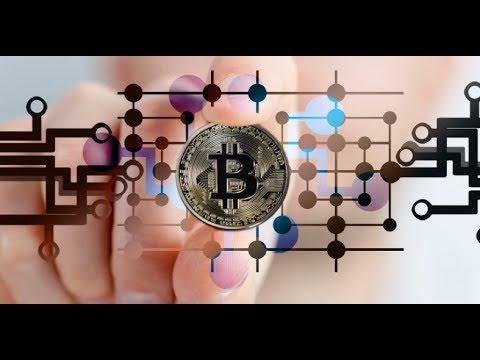Top Crypto Performers Overview Bitcoin Cash, Stellar, Monero, EOS, Ripple, ARK