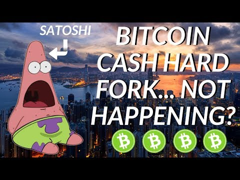 Roger Ver vs Fake Satoshi – Is the Bitcoin Cash Fork Off?