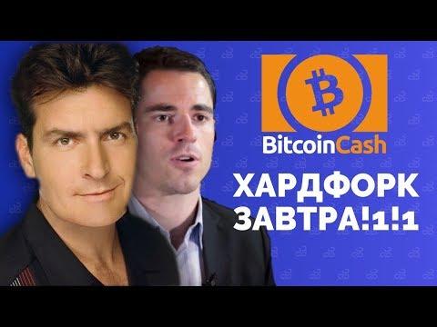 Хардфорк Bitcoin Cash уже ЗАВТРА! | Обзор BCH