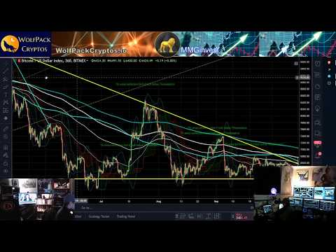 Bitcoin Crash Crypto Market Macro Update and Bitcoin Cash News