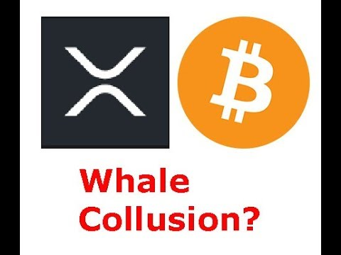 XRP, BTC wallets move over $600,000,000 in short order, whale action coming?