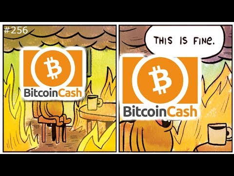 ? ? Bitcoin Cash Hard Fork Aftermath ??