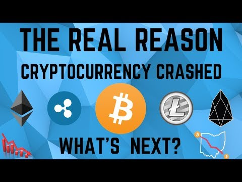 The REAL REASON Cryptocurrency CRASHED! What's Next?
