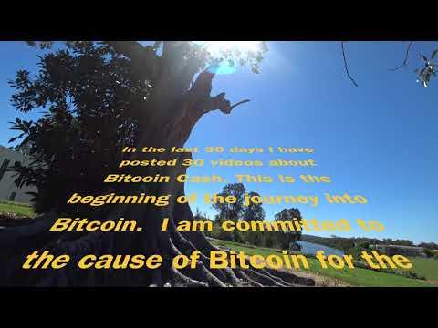 First 4K video about Bitcoin Cash BCH