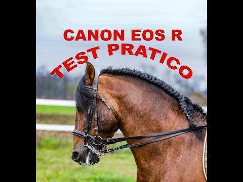 Canon EOS R, test pratico con ottiche RF e Sigma Art con adattatore