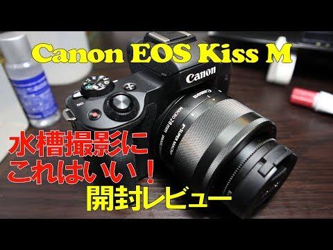 【アクアリウム】アクア用カメラレビュー EOS Kiss Mとef-m28mm f3.5 マクロ is stm